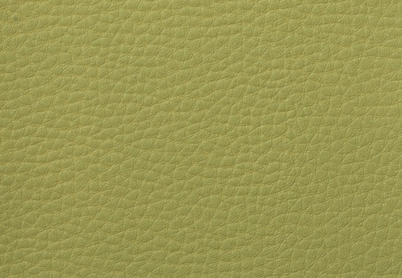 Green Imitation Leather